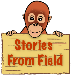 Stories From Field